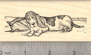 Basset Hound with Sea Shell Rubber Stamp