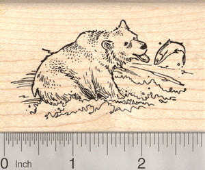 Brown Bear Rubber Stamp, Grizzly Fishing for Salmon