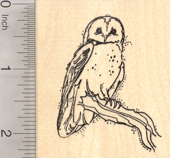 Barn Owl Rubber Stamp, Perched on Branch