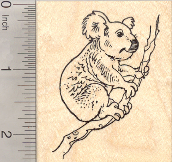 Koala Bear Rubber Stamp, Marsupial of Australia