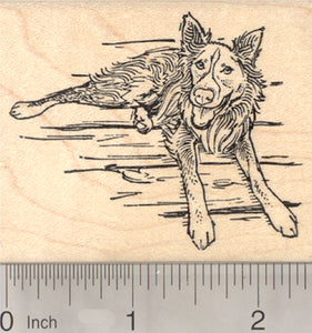 Cattle Dog Rubber Stamp