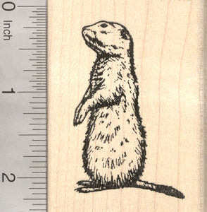 Prairie Dog Rubber Stamp