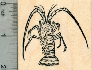 Florida Spiny Lobster Rubber Stamp, AKA Caribbean