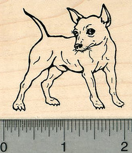 Chihuahua Dog Rubber Stamp, Standing
