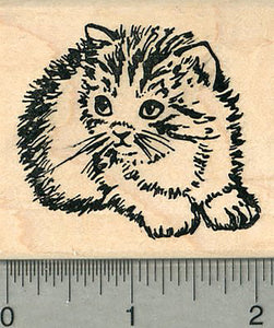Kitten Rubber Stamp, Fuzzy Breed