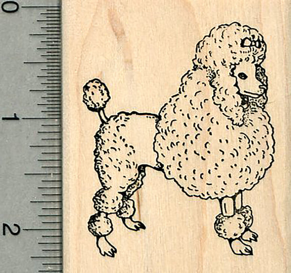 Poodle Rubber Stamp, Standing Dog