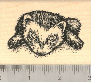 Sleeping Ferret Rubber Stamp