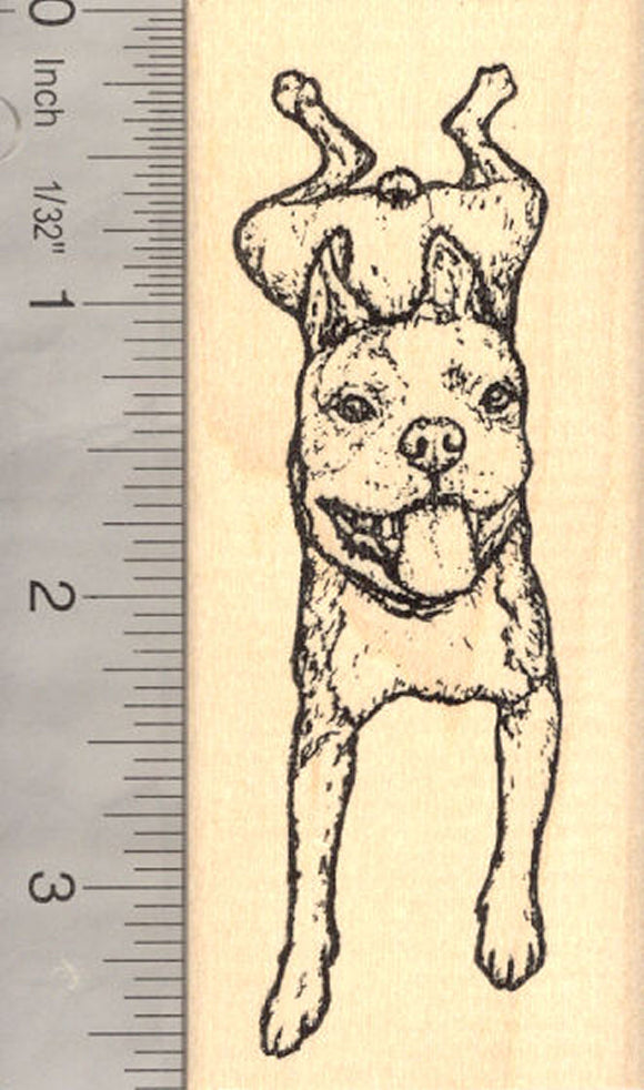 Boston Terrier Dog (Rusty) Rubber Stamp