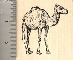 Camel Rubber Stamp