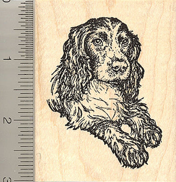 Black English Cocker Spaniel Rubber Stamp, Sporting Dog