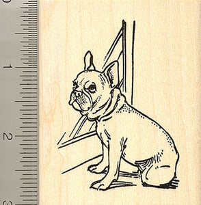 French Bulldog At Window Rubber Stamp