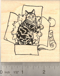 Christmas Kitty in Gift box Rubber Stamp