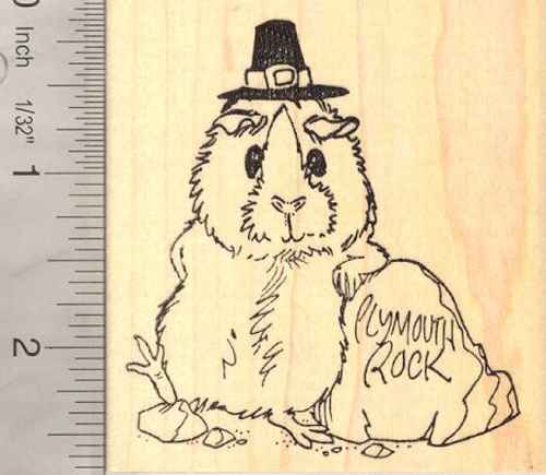 Guinea Pig Thanksgiving Pilgrim Rubber Stamp