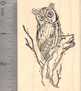 Eastern Screech Owl Rubber Stamp, North American Owls