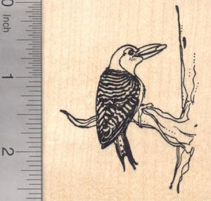Red Bellied Woodpecker Rubber Stamp