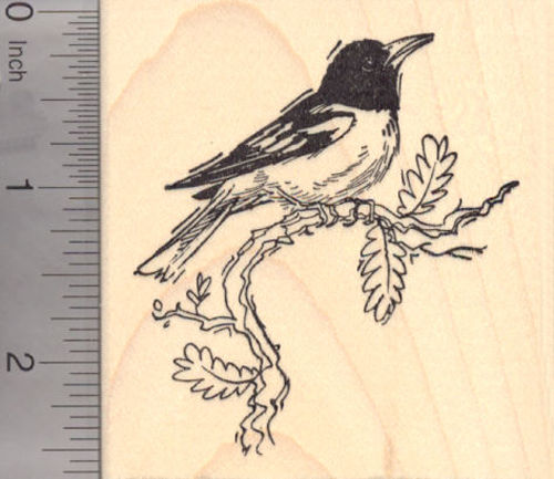 New World Oriole Bird Rubber Stamp, Baltimore Oriole