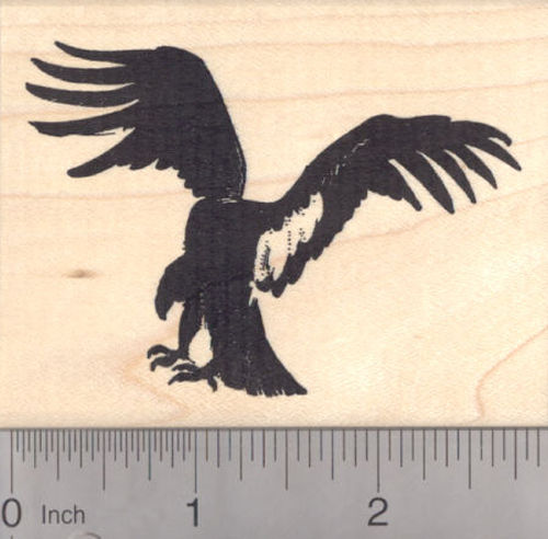 California Condor Rubber Stamp, Endangered North American Vulture