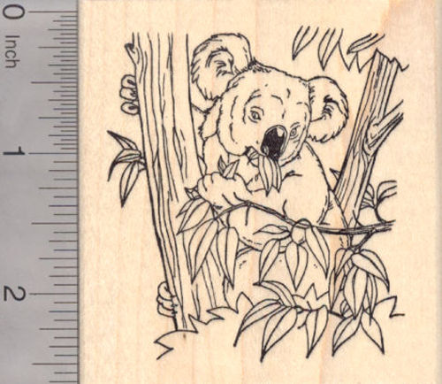 Koala Bear Eating Bamboo Rubber Stamp