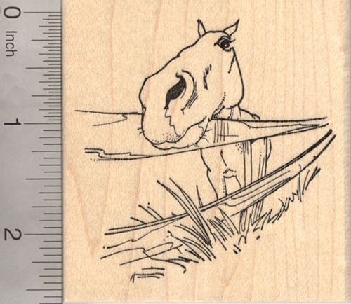 Horse with Fence Rubber Stamp