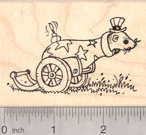 Fourth of July Ferret Rubber Stamp in Patriotic Cannon