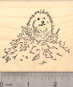 Coton de Tuléar Dog Rubber Stamp, in Autumn Leaves