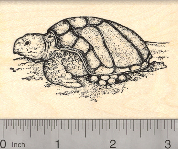 Nesting Sea Turtle Rubber Stamp, Laying eggs on the beach