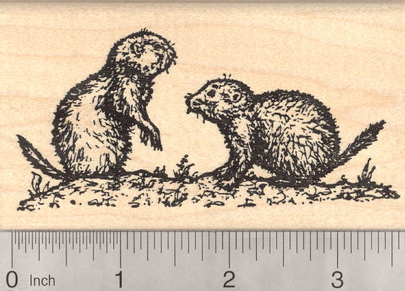 Prairie Dog Rubber Stamp, Pups