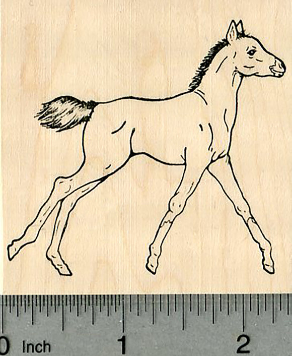 Foal Rubber Stamp, Horse Series
