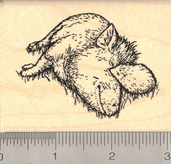 Friendship (Pot Bellied Pig and Hedgehog) Rubber Stamp