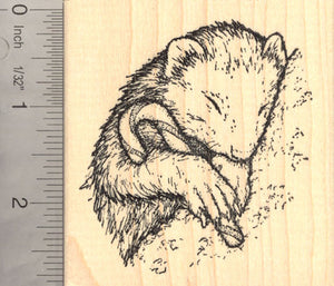 Ferret with Candy Cane (Carmel Corn) Rubber Stamp
