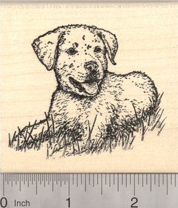 Labrador Retriever Rubber Stamp, Lab Puppy Dog