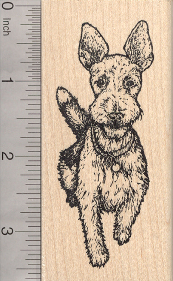 Wire Hair Fox Terrier Rubber Stamp, Dog