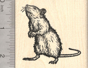 Rat Rubber Stamp, Standing Upright