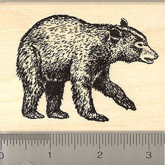 Black Bear Rubber Stamp