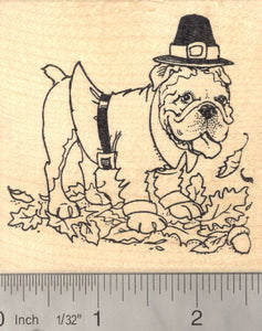 Bulldog Thanksgiving Pilgrim Rubber Stamp