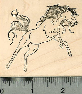 Wild Horse Rubber Stamp, on Hind Legs, Rearing Up