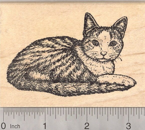 Tabby Cat Rubber Stamp, Bib and Mitts Markings