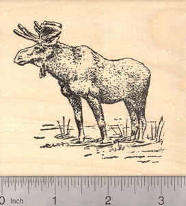 Large Moose Rubber Stamp