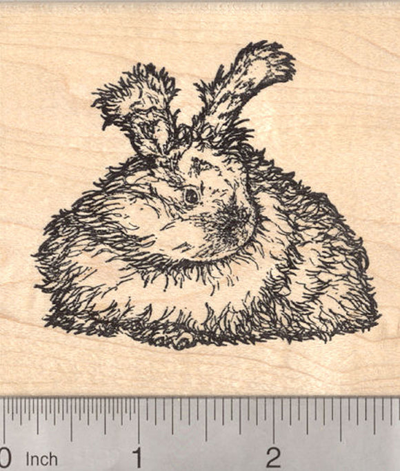 English Angora Rabbit Rubber Stamp, Detailed Longhaired Bunny Stamper