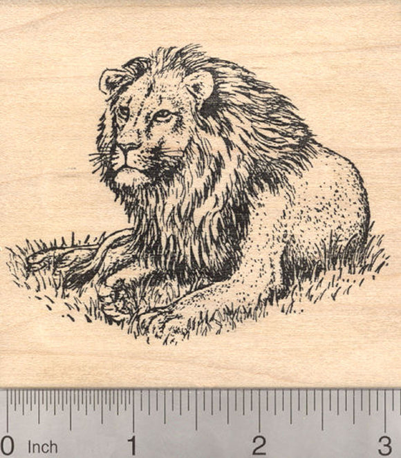 Lion Resting Rubber Stamp, African and Asian Wildlife