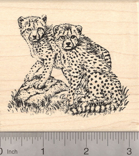 Cheetah Cub Rubber Stamp, Pair of Cubs on Rocks, Large