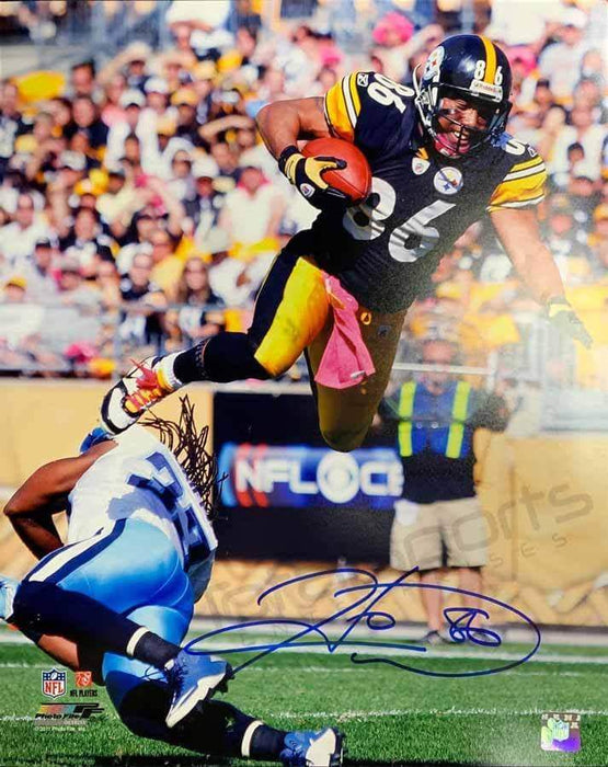 Hines Ward Signed Leaping Over Lions 16x20 Photo