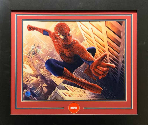 Stan Lee Signed 16X20 Spiderman Horizontal - Professionally Framed