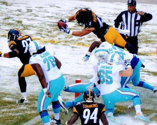 Troy Polamalu diving against MIA in snow Unsigned 8x10