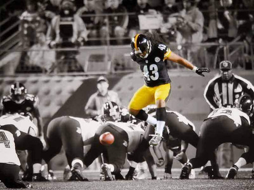 Troy Polamalu Jumping the Line Spotlight Unsigned 8x10 Photo