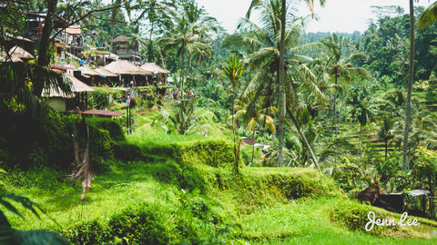 Ubud will give you real Eat Pray Love vibes. Perfect for a female solo traveler.