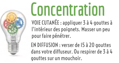 Synergie aromatique concentration