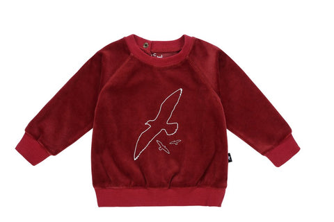 Petit Clair maroon velour bird sweatshirt