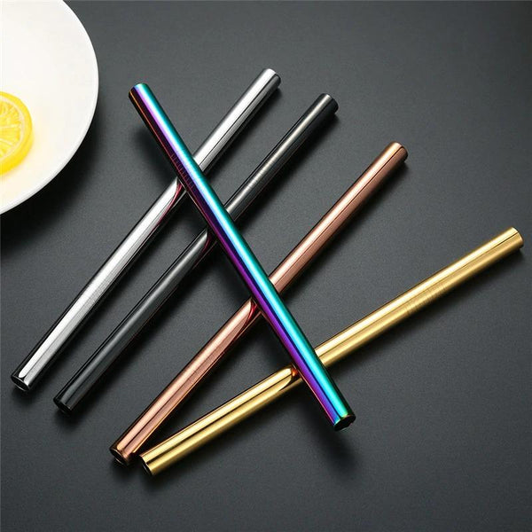 wide stainless steel straw 2pc set