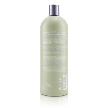 ABBA Gentle Shampoo Size: 946ml/32oz